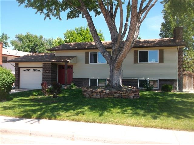 house for rent in 4035 cantrell dr colorado springs co